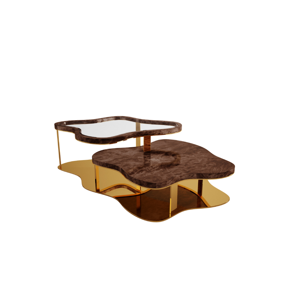 Marina Modern Center Table in walnut wood root and clear glass