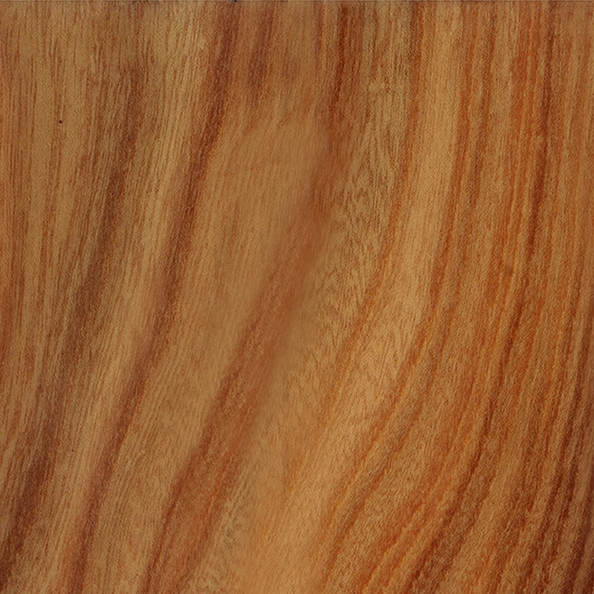 figured oak - wood veneer