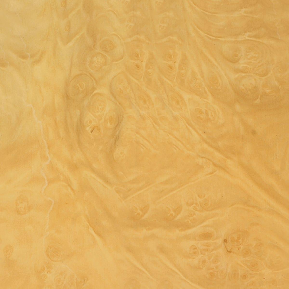 olive wood root